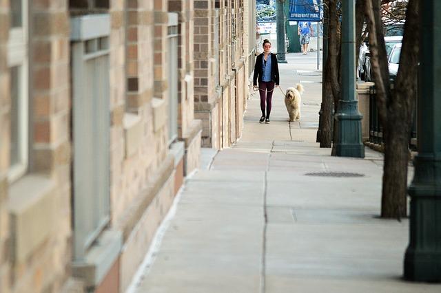 犬と街中をお散歩
